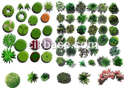 pattern photoshop trees 317 cikbase com plant trees in graphic design material