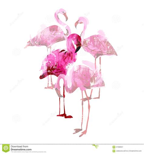 watercolor flamingos stock vector image 57938937