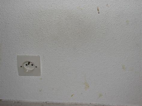 Crepi Exterieur Au Rouleau 3154 by Sup 233 Rieur Enduire Un Mur Exterieur Au Rouleau 4 Comment