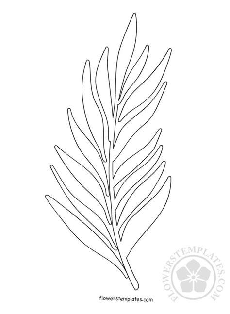 palm branch template palm branch template palm sunday flowers templates