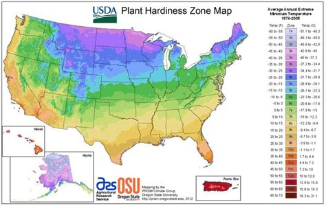 garden zone by zip code usda releases new hardiness zone map root simple
