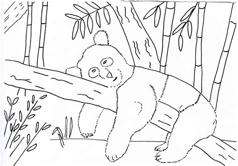 Drawing Sketches For Kids And Color Sketches For Children Sketches And Drawings For Children Drawing Template For