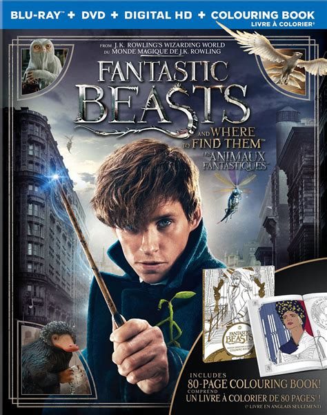 harry potter coloring book walmart harry potter coloring book for adults grown ups free pages