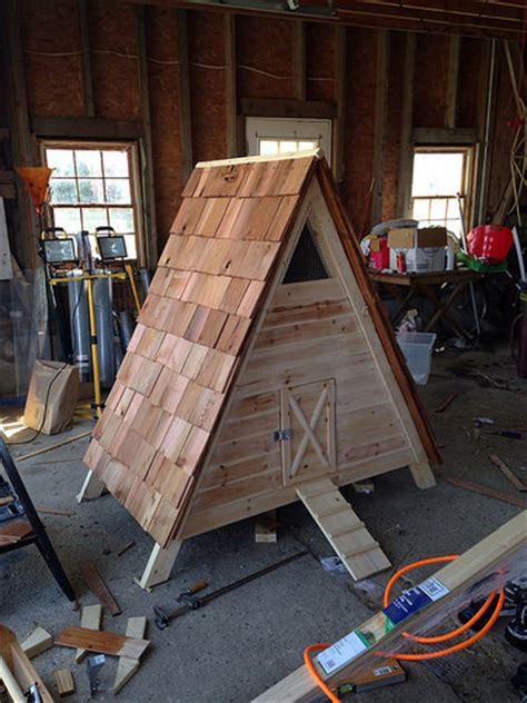 How To Build A Duck House by How To Build An A Frame Coop Or Duck House Diydiva