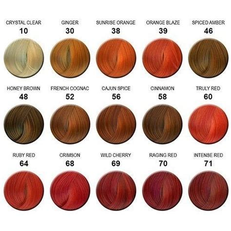 adore color chart the 25 best hair color charts ideas on