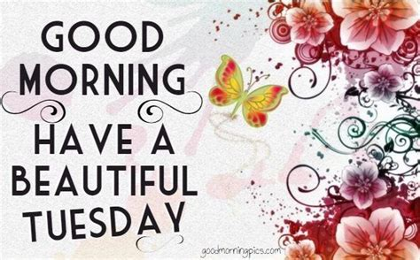 imagenes de good morning tuesday good morning have a beautiful tuesday pictures photos
