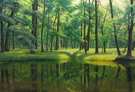 imagenes de paisajes coreanos cuadros modernos pinturas y dibujos paisajes boscosos de
