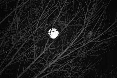 black and white moon wallpaper black and white moon images 2 hd wallpaper