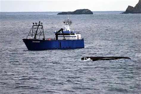 capsized fishing boat alaska deckboss october 2009