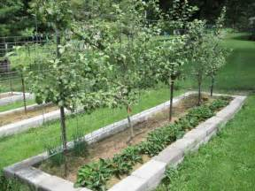 Fruit Tree Garden Layout Part 2 How To Design Your Own Miniature Fruit Garden Abundant Mini Gardens