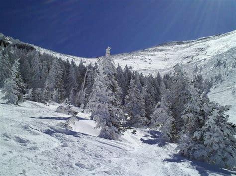 flagstaff snowfall arizona ski resort to make snow from human waste arizona
