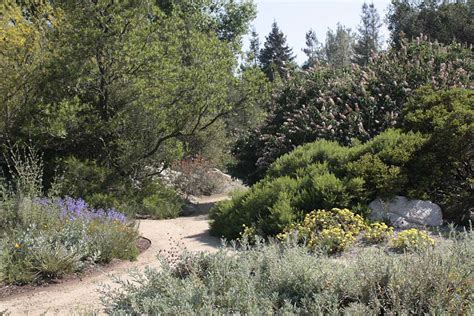 Rancho Santa Botanic Garden The World S Catalog Of Ideas