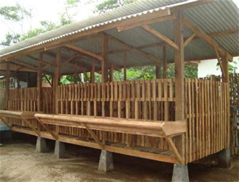 Jual Bibit Kambing Gibas Jawa Tengah peternakan kambing quot berdikari quot batang jawa tengah
