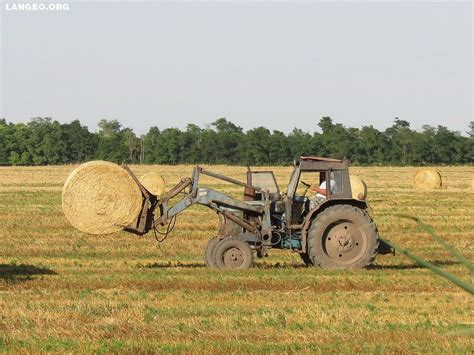 lada agro russia agro straw belarus terrion and lada niva with