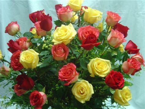 Beautifull Flower Lq worlds most beautiful flowers car interior design