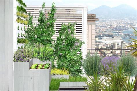 orti sul terrazzo un orto sul balcone livingcorriere