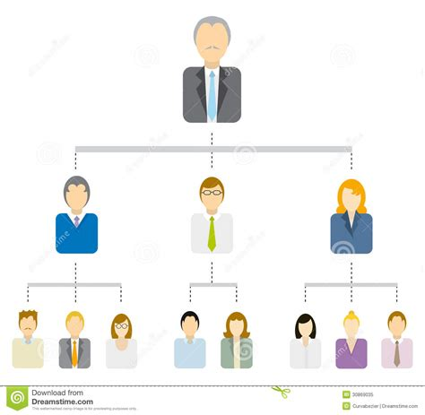 business tree diagram hierarchical tree diagram business structure royalty