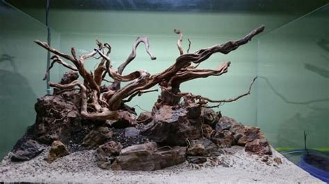 Driftwood Aquascape by Beautiful Aquarium Design With Driftwood And Rock