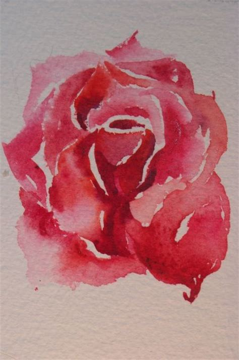 water color rose tattoos watercolor no black lines all color and shadings