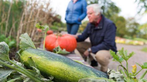 Herbst Garten Was Ist Zu Tun by Garten Im September Das Ist Zu Tun Rasen M 228 Hen Und