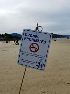 oregon service in laws oregon drone laws romano