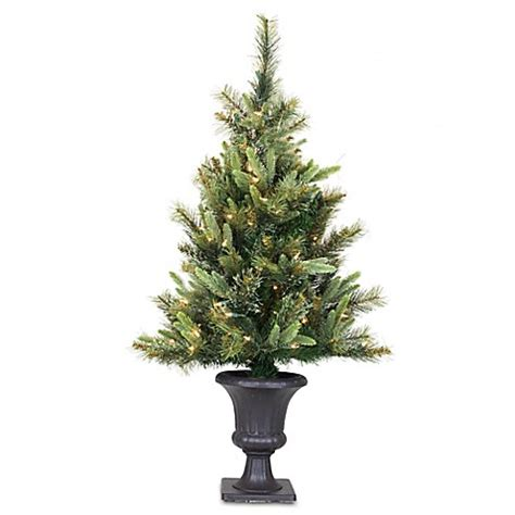 tree in lighted pot buy vickerman 3 5 foot pine tree with warm white led lights in pot from bed