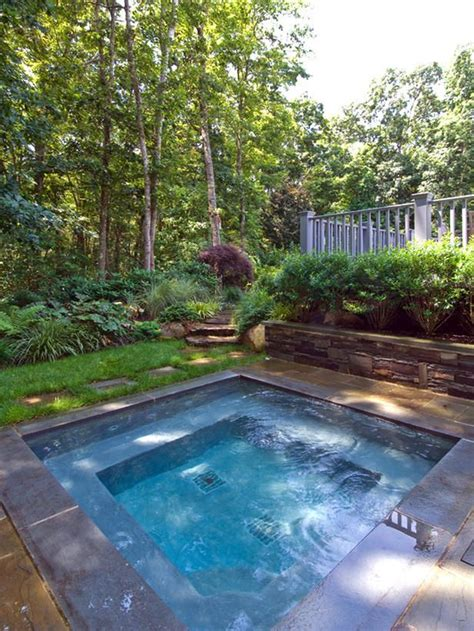 backyard plunge pool plunge pool yard pinterest