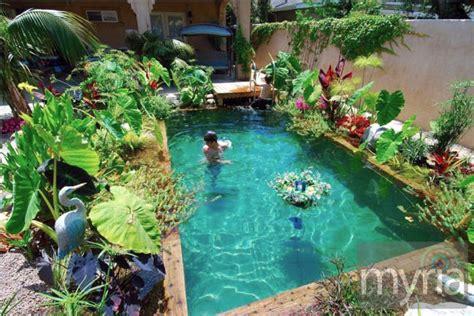 large plants around a small pool myria