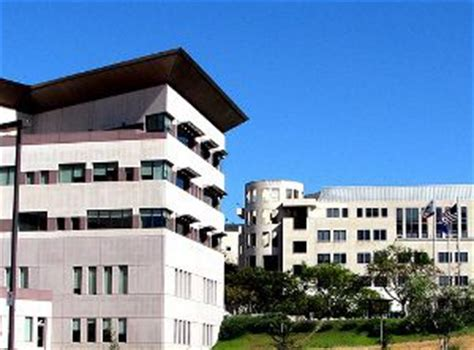 Is San Marcos Mba by Csu San Marcos Sat Scores Financial Aid Admit Rate