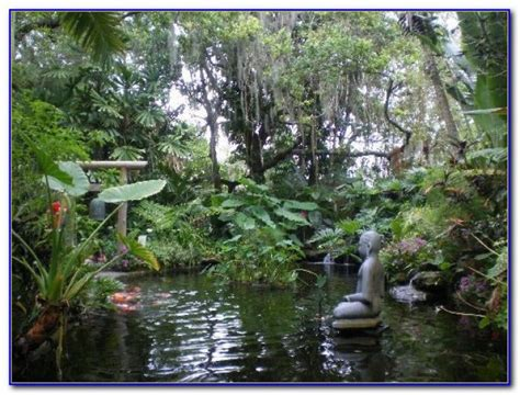 Botanical Gardens Volunteer Selby Botanical Gardens Volunteer Garden Home Design Ideas Krjejd2rzm