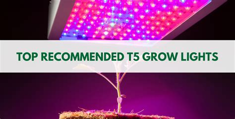 best grow lights for flowering best t5 grow lights reviews 2018 t5 light for flowering