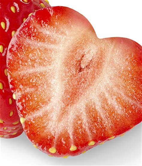 fruit a microscope fruit captures dietary mercury eu