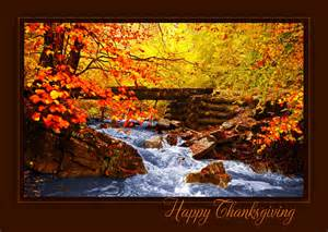 thanksgiving thanksgiving cards from cardsdirect