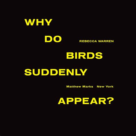 why do birds suddenly appear archive graphic design
