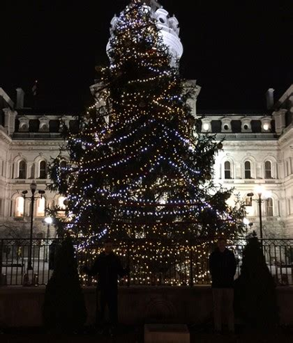 christmas tree in front of baltimore s city hall donated