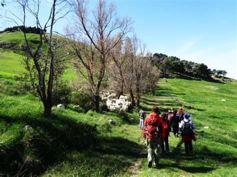 gruppo trekking bagno a ripoli trekking bagno a ripoli