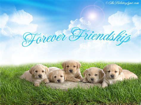 imagenes en ingles para amigos imagenes de amistad en ingles