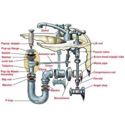 parts of a bathroom sink anatomy of a sink building tips sinks and