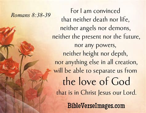images of love verses bible verse about love romans 8 38 39 bible verse images