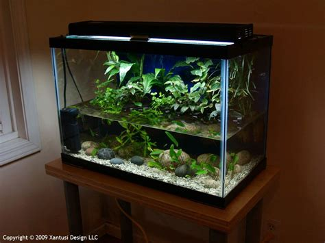 aquascaping tall tanks aquascaping tall tanks 28 images adventures in aquascaping aquarium rocks and