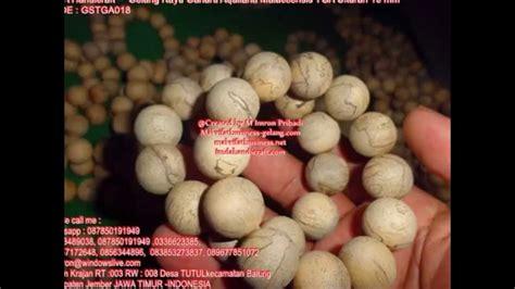 Gelang Gaharu Aquilaria Ukuran 18 Mm gelang kayu agarwood bracelets gaharu aquilaria