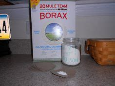borax for bed bugs roaches on pinterest veterans day gifts roach remedies