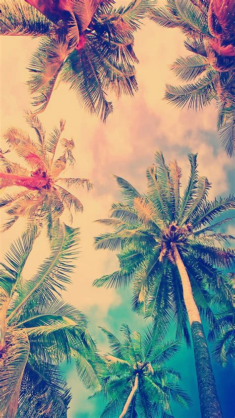 wallpaper hd iphone 6 color false color coconut trees iphone 6 wallpaper ipod