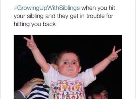 Funny Sibling Memes - 25 best growing up with siblings images on pinterest