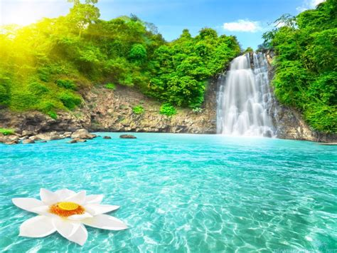 The Paradise what is the description of paradise about islam