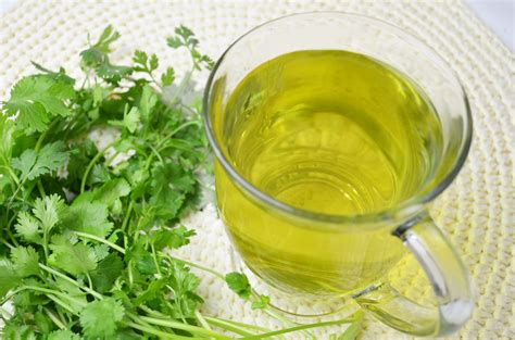 Cilantro Tea Detox asian living asian lifestyle cilantro cilantro leaf