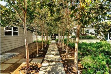 nice layout   backyard orchard backyard layout