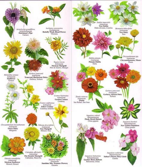 names  flowers flower chart flower