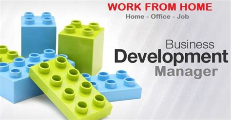 business development manager work from home