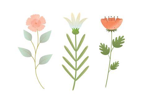 Flower Vector vector flower illustration free vector